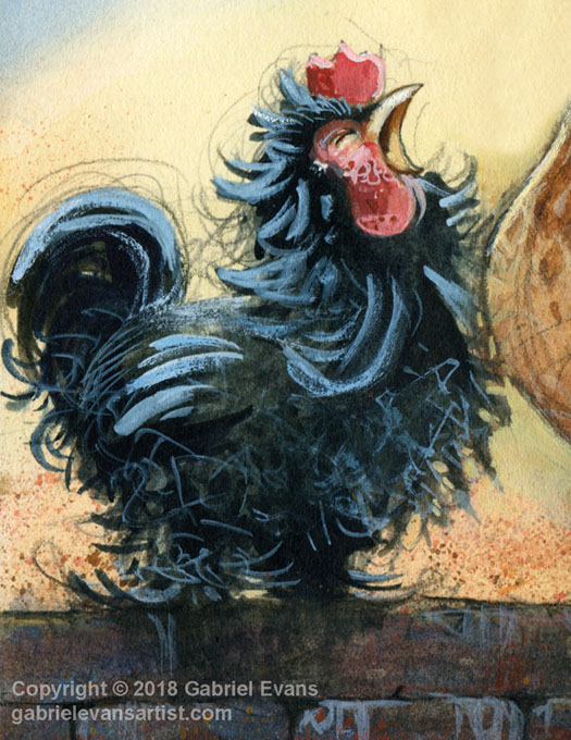 Gabriel Evans - Chicken Illustration